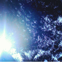 Somewhere over Puerto Rico taken by my wonderful cousin Maryane